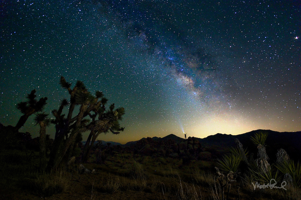 Last weekend we drove out to Joshua Tree to enjoy the stars and hopefully capture the Milky Way. It didn't disappoint! It was the perfect cloudless night to watch our galaxy rise up into the black sky. We couldn't get enough of it shooting all night and see the dawn on the next morning