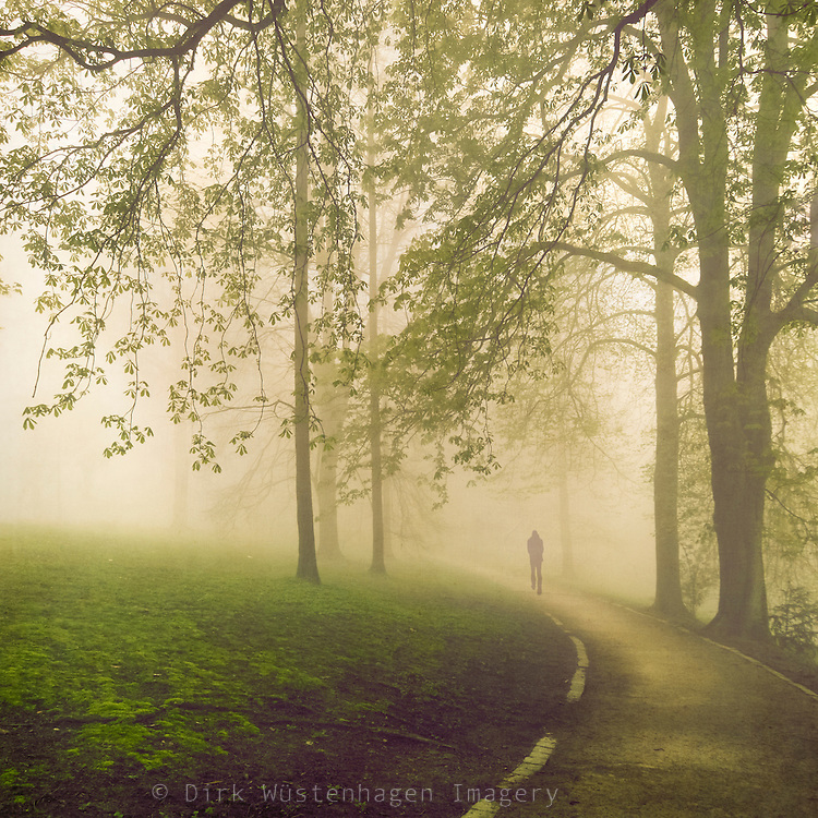 Man taking a walk through a park in spring green.<br />