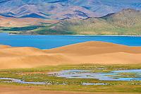 Mongolie, province de Zavkhan, lac Noir, troupeau de chevaux // Mongolia, Zavkhan province, Khar Nuur lake; horse herd