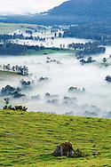 A valley hides in secret below the morning fog, Australia.