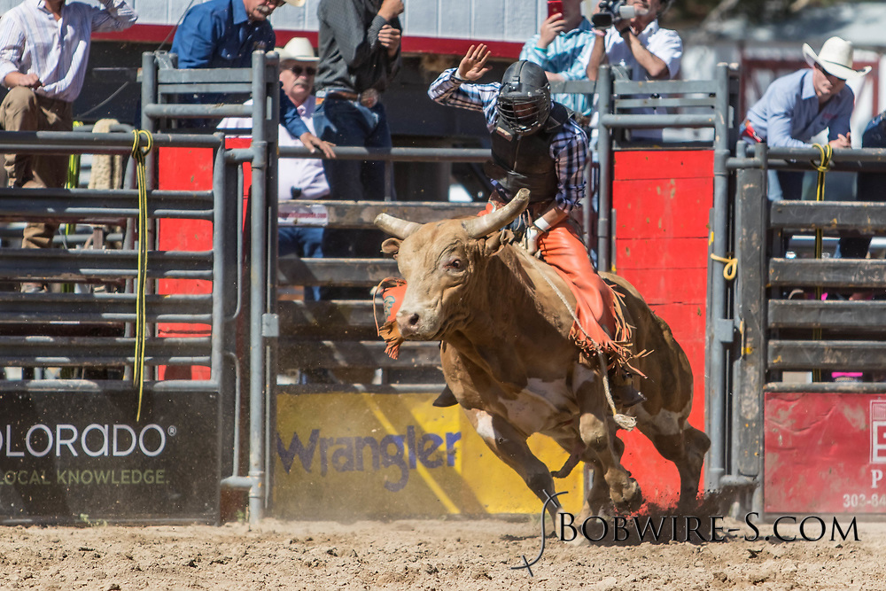 Bull rider Cyler Doremus rides Summit Pro Rodeo's 2158 Come Knock'n in the first performance of the Elizabeth Stampede on Saturday, June 2, 2018.