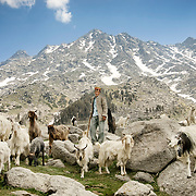 Nomadic goat herder in Himalayan Mountains