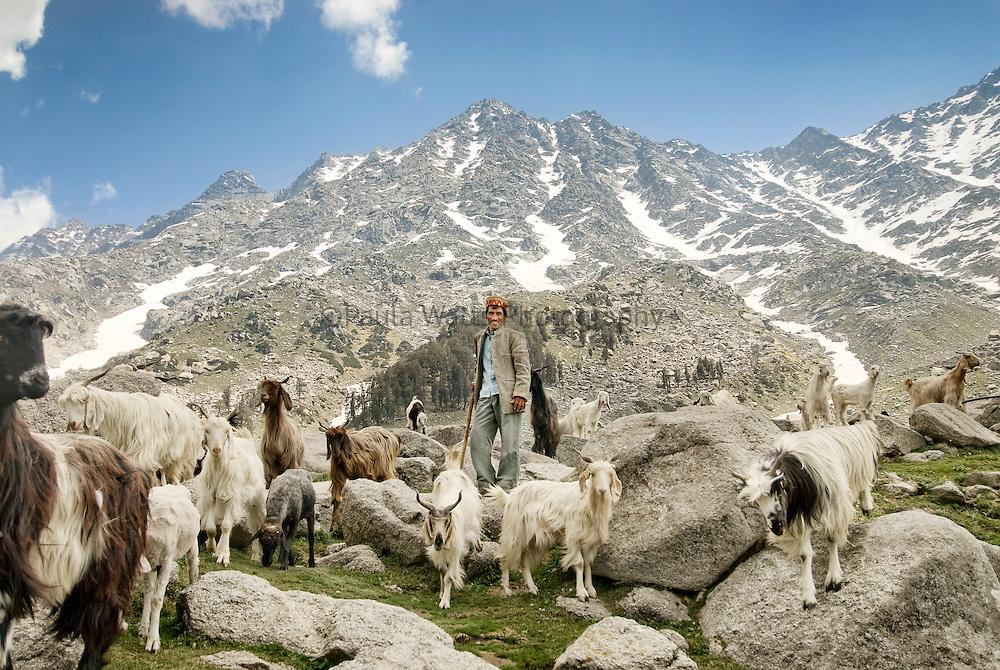 Nomadic goat herder in Himalayan Mountains