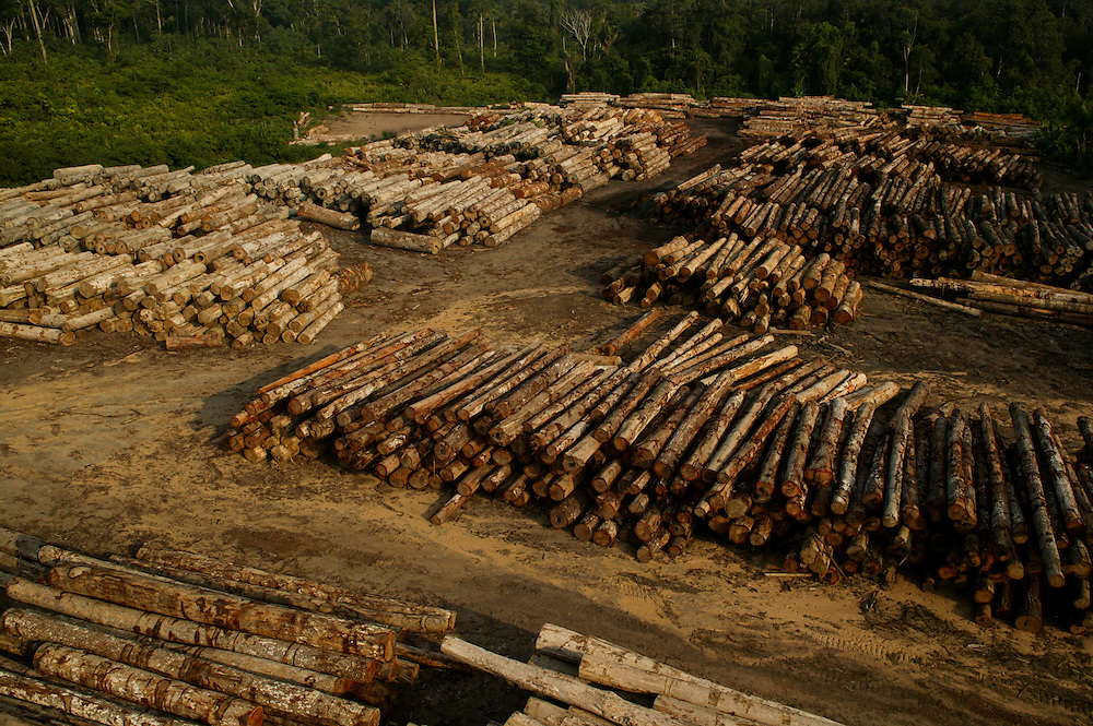 Dec. 8, 2003: A log sorting yard seized by the Ibama Police in the Porto de Moz region of Para State, Brazil. ©Daniel Beltra