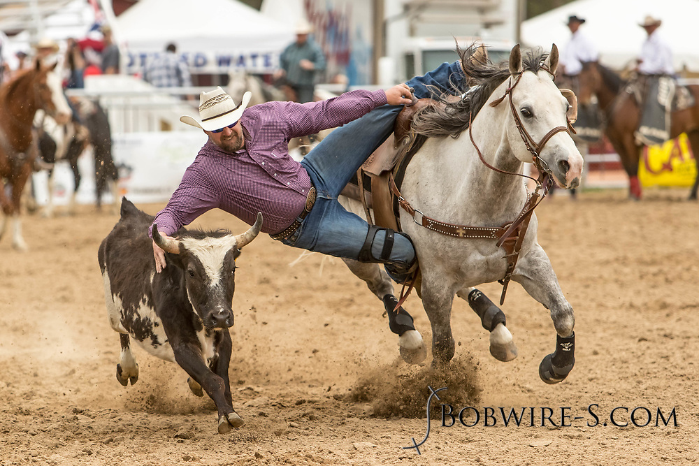 Justin Barhite makes his steer wrestling run during the third performance of the Elizabeth Stampede on Sunday, June 3, 2018.