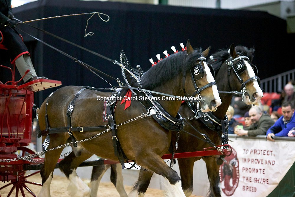 Ron Brewster driving J W &amp; M McIntyre's Batman and Robin<br /> 2nd Pairs Trade