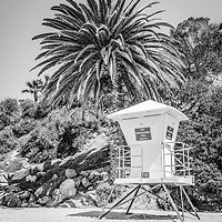 Laguna Beach California lifeguard tower black and white picture with palm trees and sand. Laguna Beach is a beach community along the Pacific Ocean in Orange County Southern California.