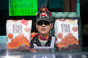Korean saleswoman in kiosk with fastfood snacks, Unification Observatory complex / Goseong, South Korea, Republic of Korea, KOR, 08 October 2009.