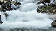 Rapids along Paradise River Trail in Mt Rainier National Park.