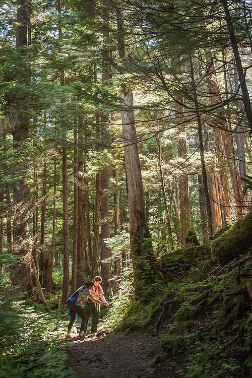 US Forest service employees lead a hike on Indian River Trail during the Sitka Arts and Science Festival.