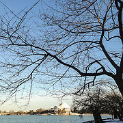 The famous cherry trees lining Washington DC's Tidal Basin are likely to bloom late this year after an unusually cold winter in the region.