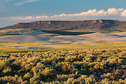 Sagebrush steppe and sand dunes with Essex Mountain in background