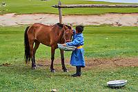 Mongolie, Province de Ovorkhangai, Vallee de l'Orkhon, jeune graçon nourrissant son cheval // Mongolia, Ovorkhangai province, Orkhon valley, young boy feeding his horse