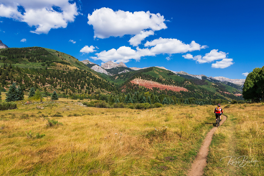 Mountain biker on the Galloping Goose Trail, Uncompahgre National Forest, Telluride, Colorado USA (MR)