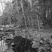 Wahconah Falls Brook, Dalton, MA