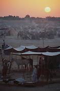 Dawn at the Mallinath Fair at Tilwara, near Balotra, Rajasthan, India.