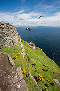 Outer walls of the monastery on Skellig Michael (Little Skellig, background), County Kerry, Ireland