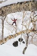 Josh Dirksen in the trees. Niseko backcountry, Hokkaido, Japan.