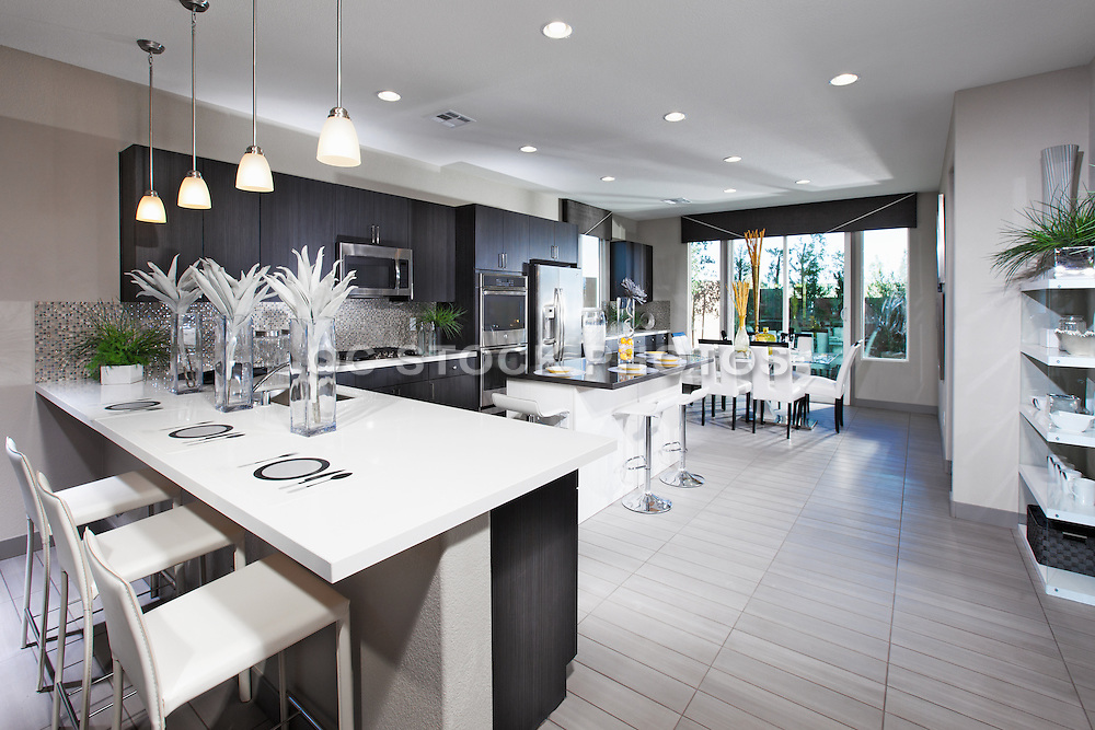 Modern White Kitchen with Dark Cabinets
