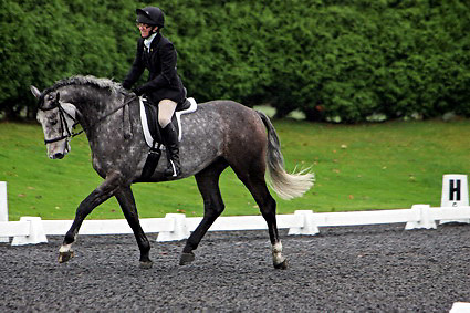 Affiliated dressage at Sheepgate Equestrian Centre..1-11-2009.Horse 257