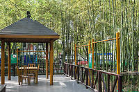 Shanghai, China - April 7, 2013: public shelter surrounded by bamboo trees in gucheng park at the city of Shanghai in China on april 7th, 2013
