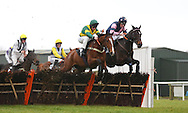 Plumpton, UK. 12th December 2016. <br /> Templier ridden by Jamie Moore (Green Cap)  clear an early fence ahead of Leighton Aspell and Give Him Time (Pink/Navy)  before winning the J H Builders Novices&acute; Hurdle<br /> &copy; Telephoto Images / Alamy Live News