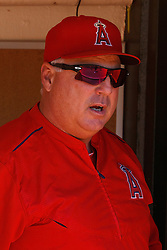 OAKLAND, CA - JUNE 21:  Mike Scioscia #14 of the Los Angeles Angels of Anaheim stands in the dugout before the game against the Oakland Athletics at O.co Coliseum on June 21, 2015 in Oakland, California. The Oakland Athletics defeated the Los Angeles Angels of Anaheim 3-2. (Photo by Jason O. Watson/Getty Images) *** Local Caption *** Mike Scioscia