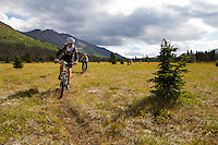 Riders - James Minifie and Tony Painter (foreground), Trail Name - Cottonwood Trail, Kluane National Park, Yukon