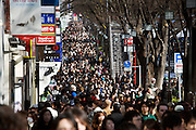 over crowded street in Tokyo during the St. Patrick's Day Parade on Omotesando - Harajuku, Tokyo Japan