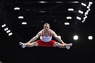 Abu Dhabi, United Arab Emirates - 2019 March 15: Pawel Czizmowski (Poland) competes in gymnastics during Special Olympics World Games Abu Dhabi 2019 on March 15, 2019 in Abu Dhabi, United Arab Emirates. (Mandatory Credit: Photo by (c) Adam Nurkiewicz)