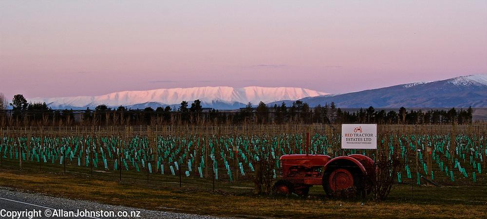 Red Tractor vineyard on Wanaka Road Otago