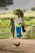 Indian woman in small village. Photography by Debbie Zimelman, Modiin, Israel.
