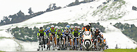 INVERCARGILL, NEW ZEALAND - NOVEMBER 05:  The Peloton rides during day seven of the 2011 Tour of Southland on November 5, 2011 in Invercargill, New Zealand.  (Photo by Teaukura Moetaua/Getty Images)