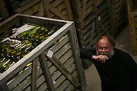 Muscadet winemaker Marc Ollivier, Domaine de la Pepiere, .Maisdon-sur-Sevre..Photograph by Owen Franken
