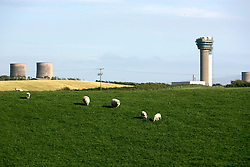 UK ENGLAND CUMBRIA SELLAFIELD 1JUN06 - Farm animals graze in close proximity to BNFL's Selllafield Nuclear Reprocessing facility on the Irish Sea coast. The facility houses two types of nuclear installations. Firstly, four reactors located at Calder Hall together with their associated facilities are concerned with the generation of electricity and steam for consumption on the Sellafield site and feeding electricity into the National Grid. The second facility, comprising several hundred buildings is associated with the treatment and storage of radioactive wastes, and the reprocessing of irradiated nuclear fuel arising from the UK nuclear power programme and from overseas reactors under commercial contracts negotiated by BNFL...jre/Photo by Jiri Rezac..© Jiri Rezac 2006..Contact: +44 (0) 7050 110 417.Mobile:  +44 (0) 7801 337 683.Office:  +44 (0) 20 8968 9635..Email:   jiri@jirirezac.com.Web:    www.jirirezac.com..© All images Jiri Rezac 2006 - All rights reserved.