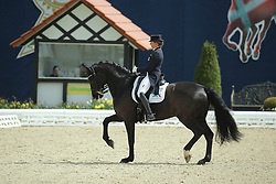 Schneider Dorothee, (GER), Ullrich Equine's St Emilion<br /> Qualification Grand Prix Kur<br /> Horses & Dreams meets Denmark - Hagen 2016<br /> © Hippo Foto - Stefan Lafrentz