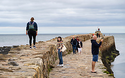 St Andrews, Scotland, UK. 7 September, 2020. Freshers Week starts at the University of St Andrews in Fife. Overseas and domestic students are arriving in the town this week. Many students are accompanied by their parents and were exploring the ancient university campus and the major attractions in the town. Pictured;  Students and families walking along the harbour pier. Iain Masterton/Alamy Live News