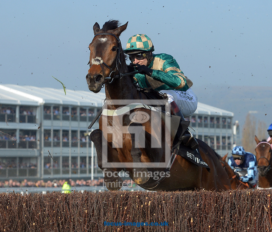 A preview of this weekend's favourites in UK Racing.<br /> Picture by Martin Lynch/Focus Images Ltd 07501333150<br /> 09/12/2016<br /> <br /> Original caption:<br /> MODULE at Cheltenham 12-3-14.