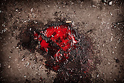 January 6 , 2012-Damascus , Syria : Blood on the ground belongs to one of tens of victims who died due a suicide bomber targeted  al-Midan Quarter in Damascus  .