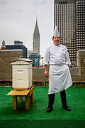 New York, New York, USA, 20120814: Kjøkkensjef på fasjonable Waldorf Astoria Hotel, David Garcelon. Andrew Cote is beekeeper on one of Manhattans highly prized addresses. Six cubes buzzing with activity stands on the rooftop of the Waldorf Astoria Hotel. Photo: Orjan F. Ellingvag