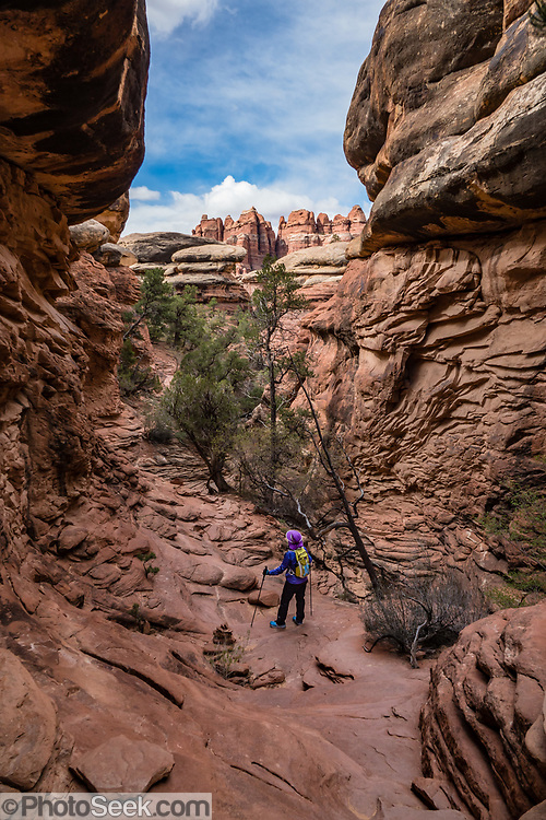 Hike from Elephant Hill to Chesler Park, in Needles District of Canyonlands NP, Monticello, Utah, USA.