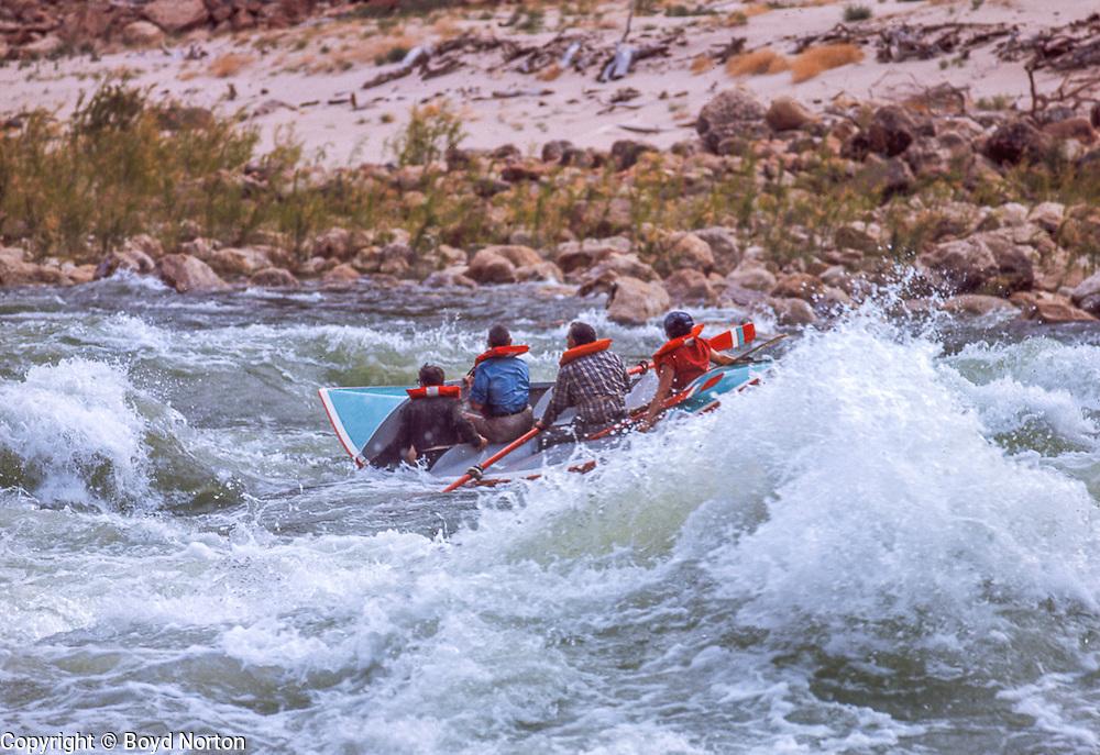 Running Soap Creek rapid, Grand Canyon dory, Colorado River, Grand Canyon National Park, AZ