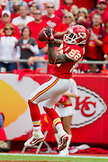 KANSAS CITY, MO - SEPTEMBER 26:   Dwayne Bowe #82 of the Kansas City Chiefs catches a touchdown pass against the San Francisco 49ers at Arrowhead Stadium on September 26, 2010 in Kansas City, Missouri.  The Chiefs defeated the 49ers 31-10.  (Photo by Wesley Hitt/Getty Images) *** Local Caption *** Dwayne Bowe