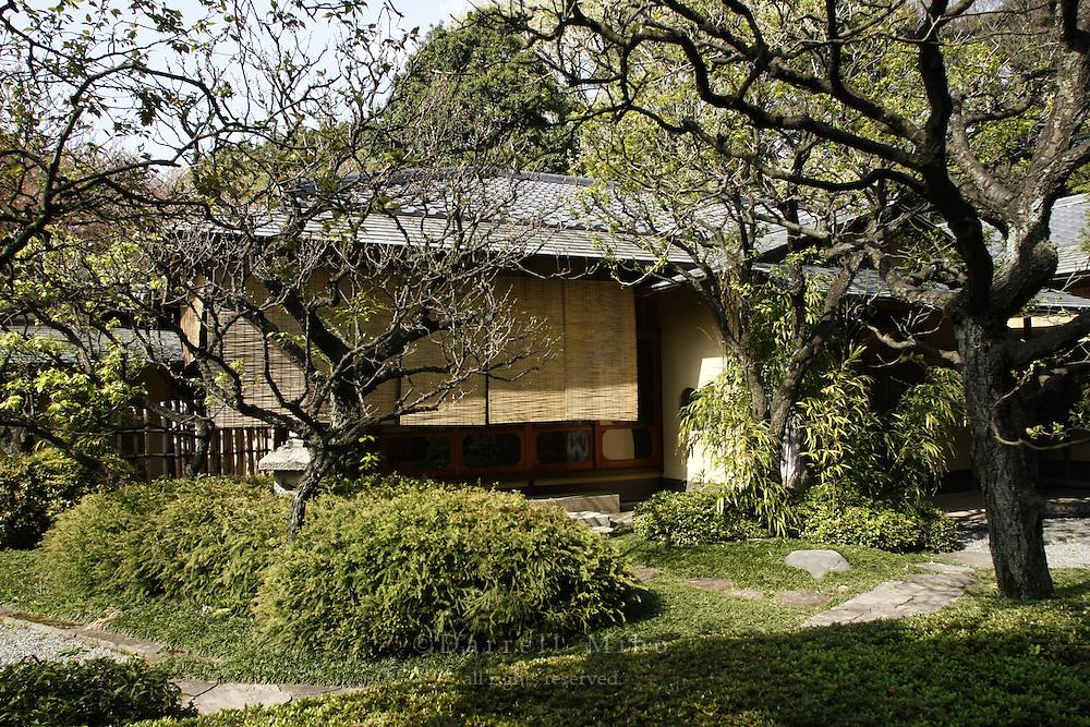 April 11, 2008; Tokyo, Japan - Rakuutei Tea House at Shinjuku Gyoen, Shinjuku...Photo credit: Darrell Miho