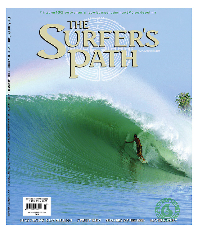 The Surfers Path cover