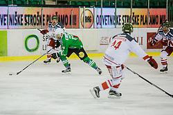 Pesut Ziga of Olimpija during ice hockey match between HDD Olimpija Ljubljana and HC Bolzano in EBEL league, on Januar 9th, 2017 in Hala Tivoli, Ljubljana, Slovenia. Photo by Grega Valancic / Sportida