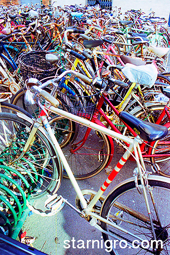 Bicycles outside of train station in Venice, Italy photograph by Star Nigro. A great example of green living.