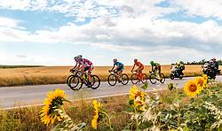 04.07.2017, Pöggstall, AUT, Ö-Tour, Österreich Radrundfahrt 2017, 2. Etappe von Wien nach Pöggstall (199,6km), im Bild die Spitzengruppe // Riders Sunflower during the 2nd stage from Vienna to Pöggstall (199,6km) of 2017 Tour of Austria. Pöggstall, Austria on 2017/07/04. EXPA Pictures © 2017, PhotoCredit: EXPA/ JFK
