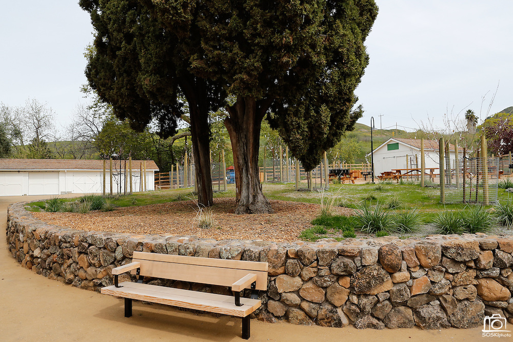 Benches, picnic tables, barbecue pits, and restrooms are spread throughout Alviso Adobe Park photographed at Alviso Adobe Park in Milpitas, California, on March 19, 2013. (Stan Olszewski/SOSKIphoto)
