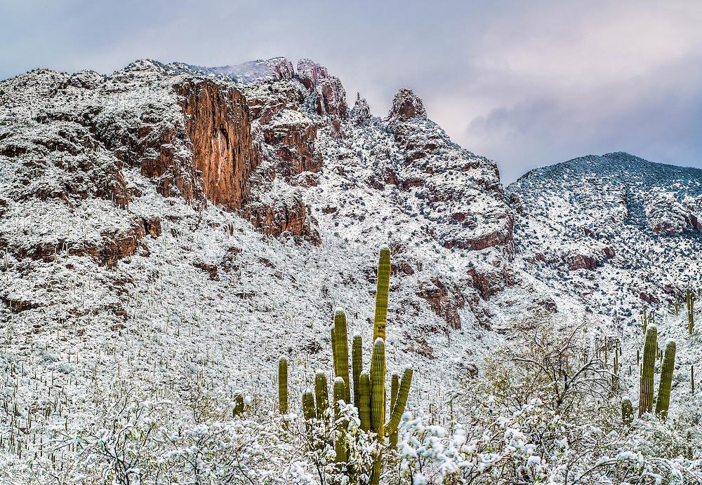 Finger Rock Trail, Tucson AZ,